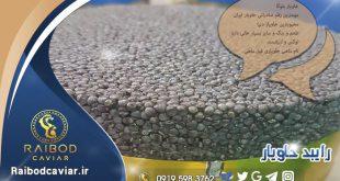 قیمت یک کیلو خاویار ایرانی